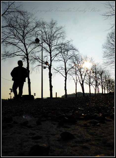 Silhouette Avenue Nepveu Versailles