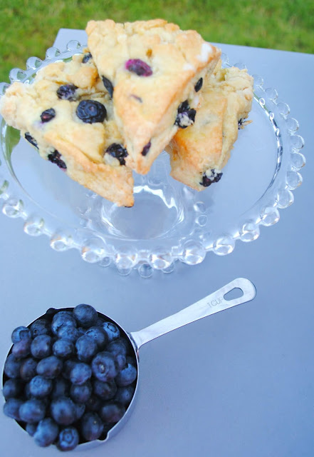 Blueberry-scones- blueberries