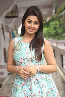 Nikki Galrani at Prema leela pelli gola trailer Launch ~  Exclusive 126.JPG
