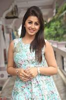 Nikki Galrani at Prema leela pelli gola trailer Launch ~  Exclusive 126.JPG