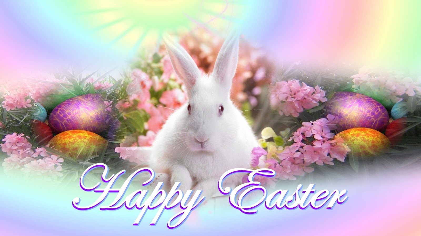 Beautiful Best Happy Easter Egg Images U0026 Pictures