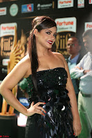 Glamarous Actress Neetu Chandra in Black dress at IIFA Utsavam Awards 011.JPG