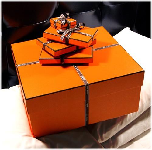 00347af16f5 MilaneseGAL  Orange by Hermès