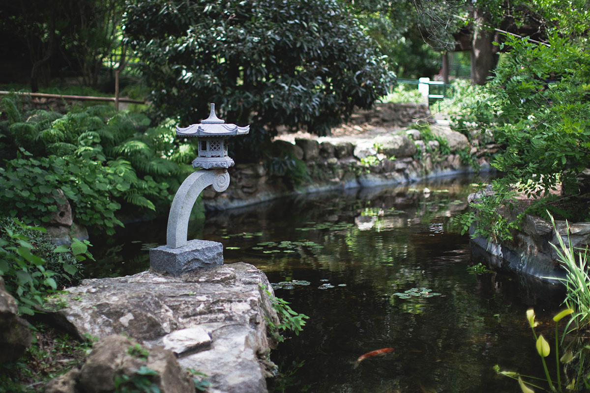 Lattes Layers Zilker Botanical Garden in Austin TX