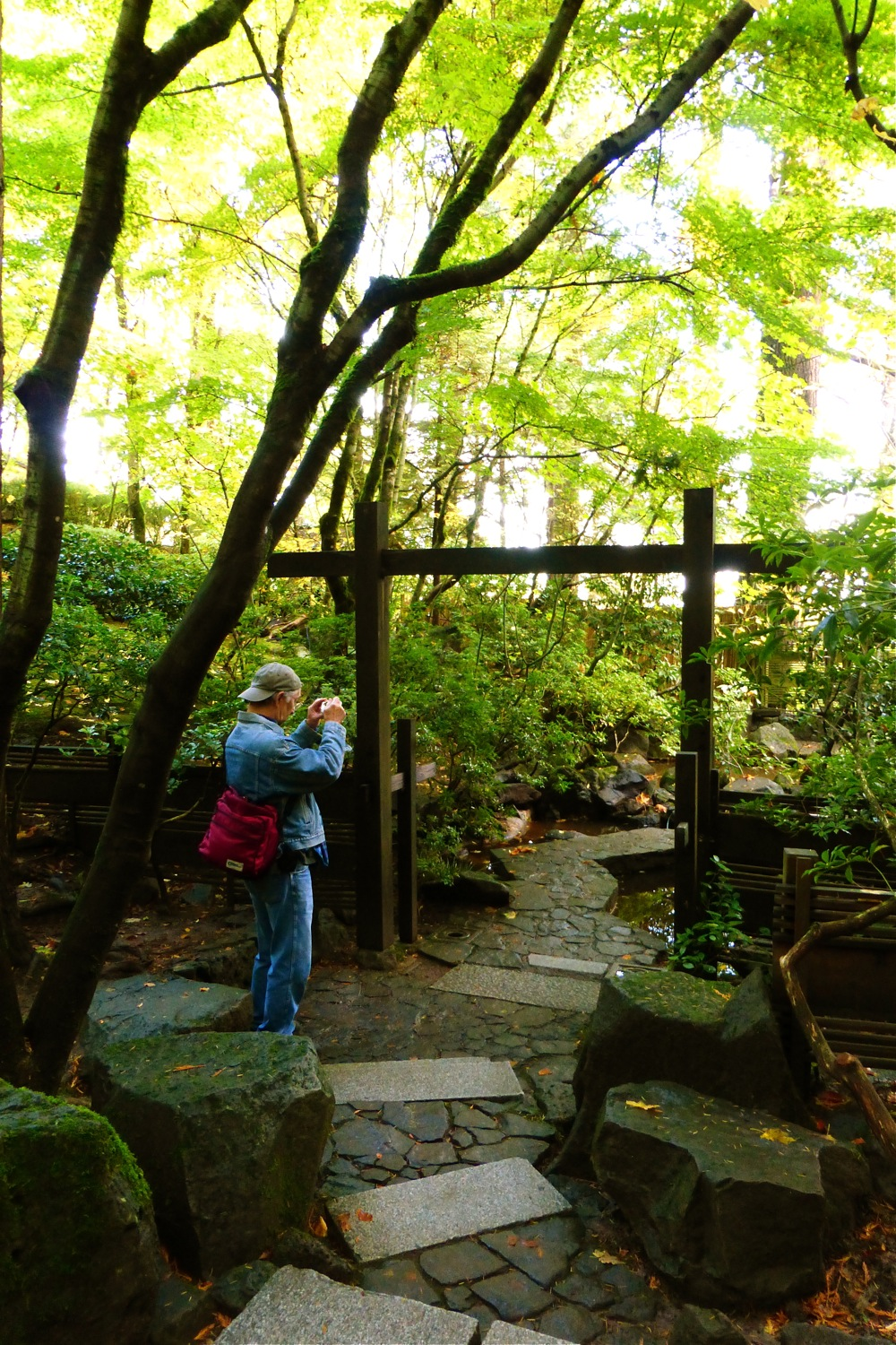 James Aoyama in Natural Garden at Portland Japanese Garden