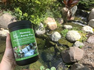 spring pond treatments