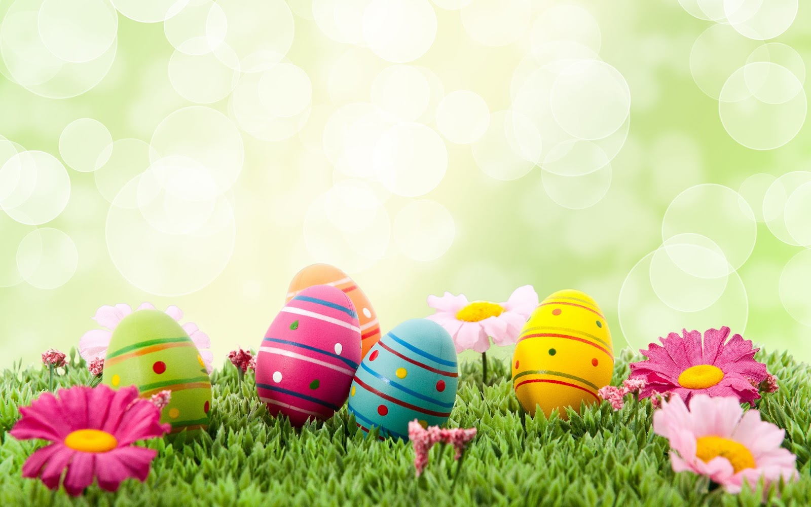 Happy Easter egg pictures and wallpapers 2021