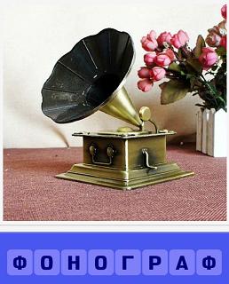 на полу рядом с цветами в вазе стоит фонограф