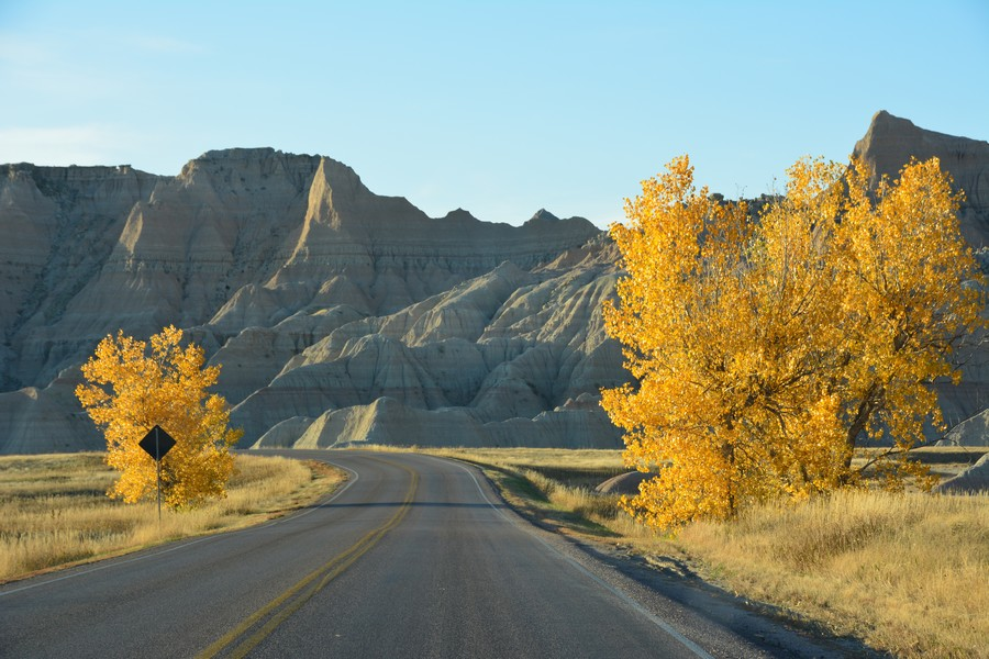 Les couleurs de l'automne à Baldlands National Park