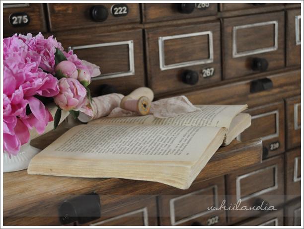 stare biblioteczne szufladki / vintage library drawers