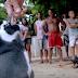 Απίστευτο!!! Δείτε τον πιγκουίνο που ταξιδεύει κάθε χρόνο 5.000 μίλια για να επισκεφτεί τον άνθρωπο που τον έσωσε