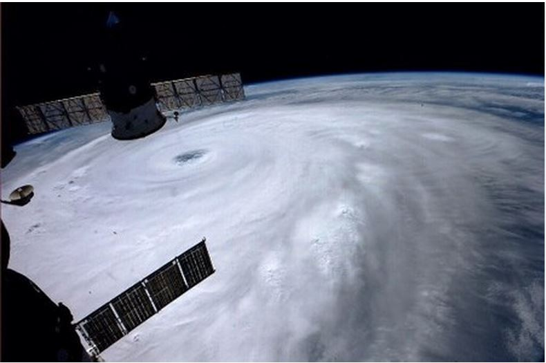 Cẩm Nang Nhật Bản cập nhật tin bão Neoguri