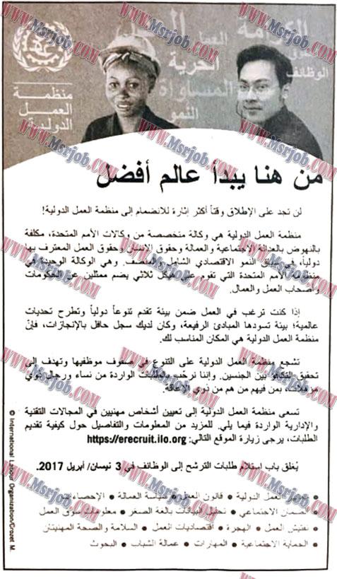 اعلان وظائف منظمة العمل الدولية لخريجي الجامعات المصرية 12 / 3 / 2017