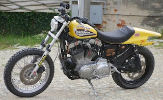 dark dog sportster tracker by udo meuthen side left
