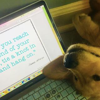 Puppy next to a computer
