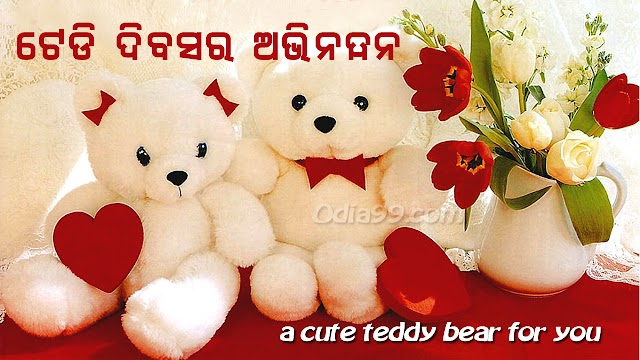 Teddy Day Odia Images, Wish Shayari, Wallpaper for Facebook and Whatsapp
