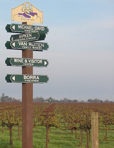 Visiting Lodi, CA wine country
