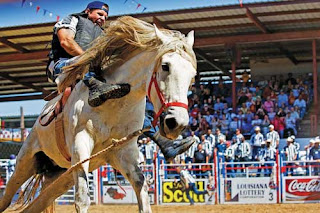 DECK THE HOLIDAY'S: ANGOLA PRISON RODEO!!