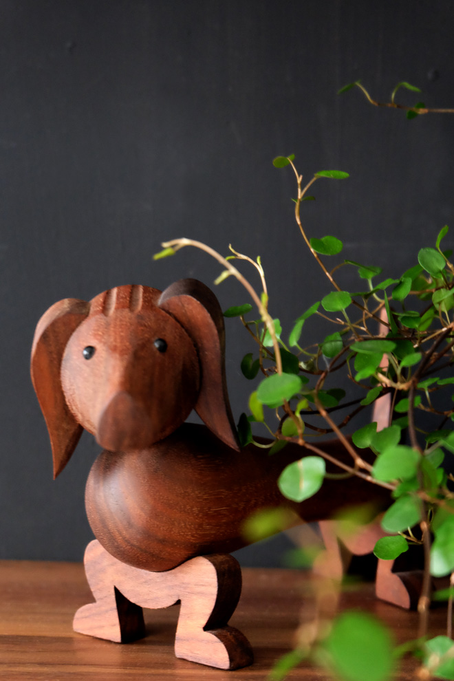 Urban Jungle Bloggers, Botanical Zoom, Minza will Sommer, Zimmerpflanzen Trend, Interiorblog, Wohnen mit Pflanzen, mit Pflanzen dekorieren, Mühlenbeckia