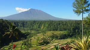 Things To Do in Bali 2