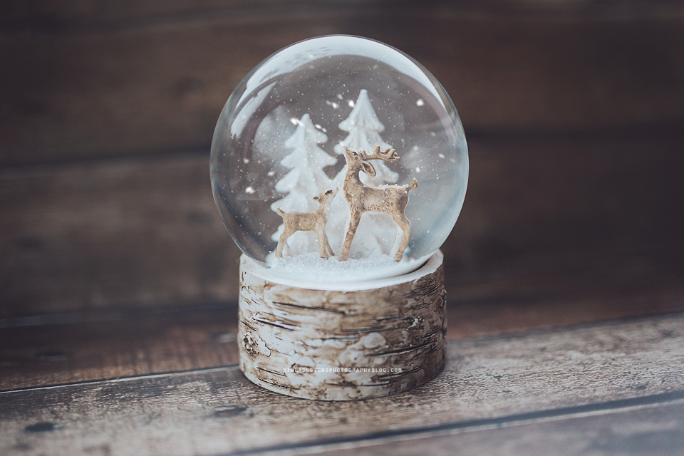 25 Days of Christmas Freebies for Photographers Day 25th