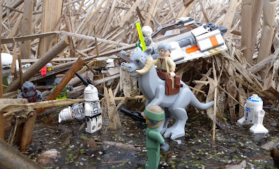 Lego Star Wars in the Marsh