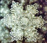 Na slici  je izvorska voda Saija, poznata po svom visokom kvalitetu. Kristal vode se perfektno formira.