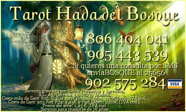 http://tarothadadelbosque.blogspot.com.es/
