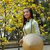 Tình khúc mùa Xuân- Nhật Quang