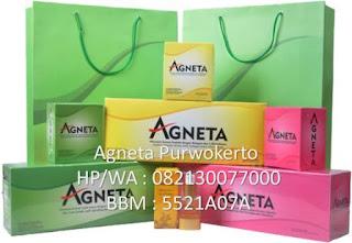 Agneta Purwokerto