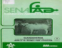 preparación-y-manejo-de-bovinos-para-exposición