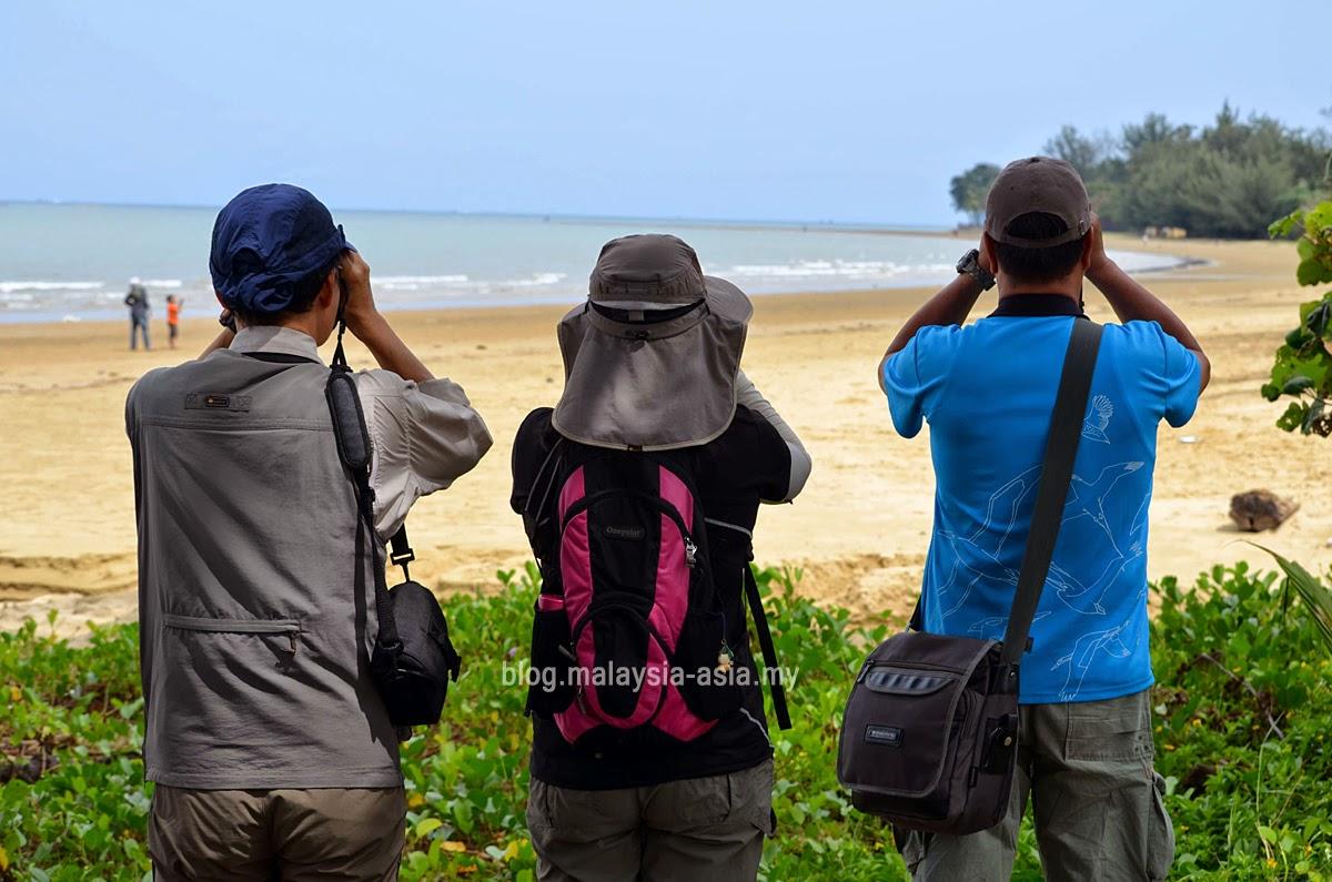 Bird Watching at Tanjung Aru, Sabah