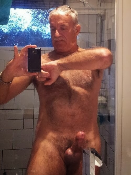 muscle silverdaddy bear