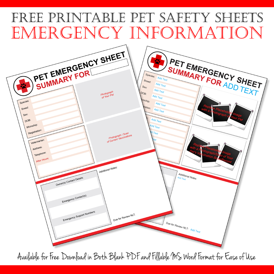 dalmatian diy free emergency pet information sheet printables