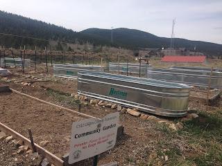 Mountain Vegetable Gardening
