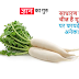 मूली खाने 10 के फायदे  Benefits of Radish