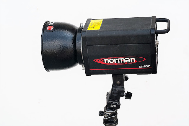 Norman ML600 Strobe on tripod via Hejnar Spigot.