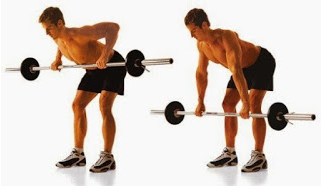 Latihan Otot Punggung Terbaik Untuk Pemula | Zonapelatih