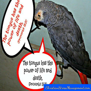 The tongue has the power of life and death (Proverbs 18:21)