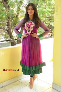 Actress Pooja Jhaveri Latest Stills in Purple Salwar Kameezt at Dwaraka Success Meet  0254.JPG