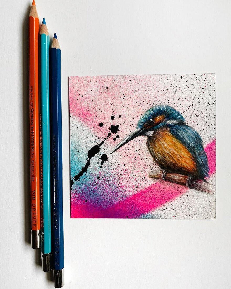 06-Kingfisher-Mixed-Media-Jonathan-Martinez-Animal-Drawings-with-Colored-Pencils-www-designstack-co