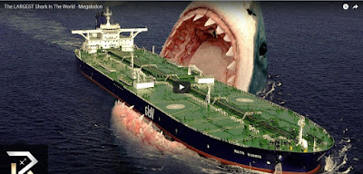 Largest shark in the world