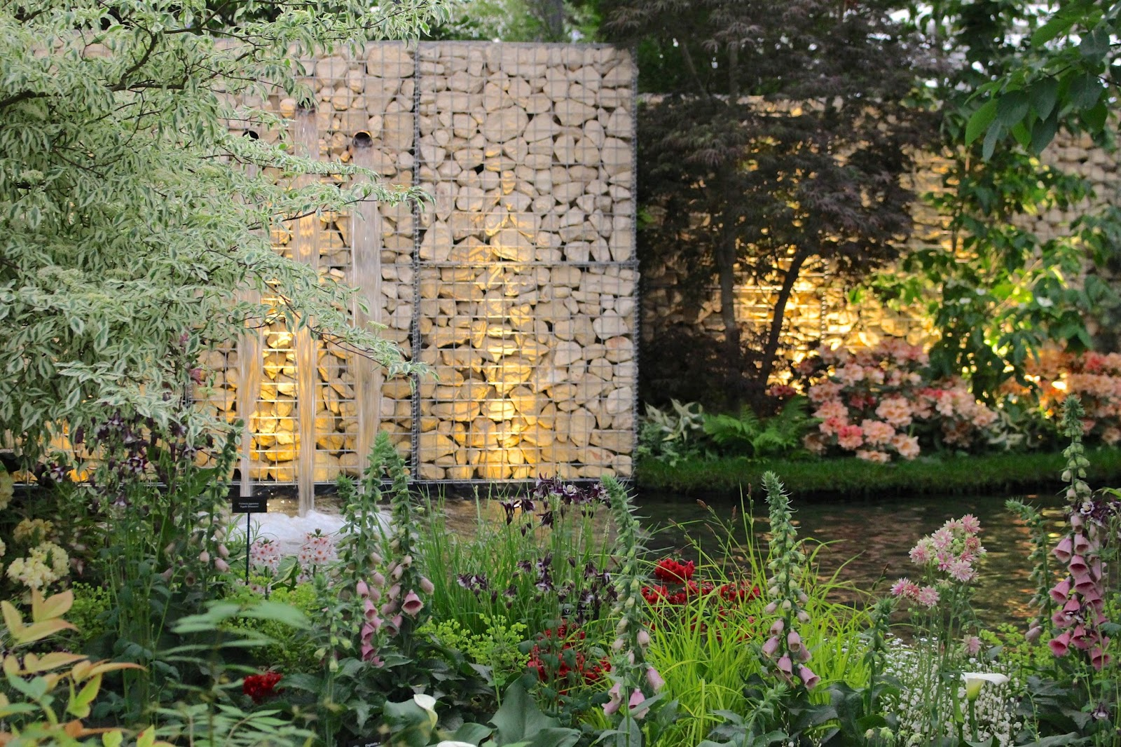 RHS Chelsea 2016 review