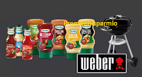 Logo Concorso ''Sei un vero Griller ?'': vinci barbecue Weber e weekend in Alto Adige