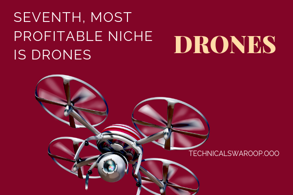 seventh, most profitable niche is drones
