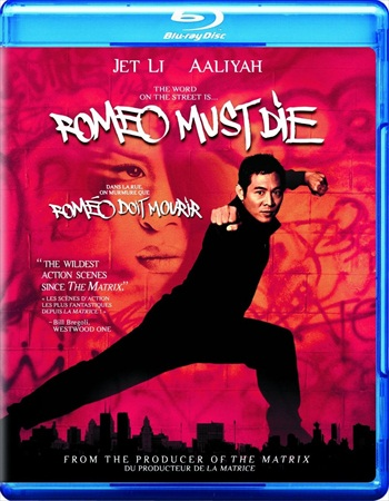 Romeo Must Die 2000 Dual Audio Hindi 720p BluRay 900mb