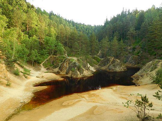 Jeziorko Purpurowe.