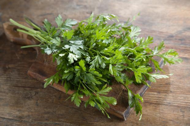 علاج التهاب الكلي والمثانة بالأعشاب