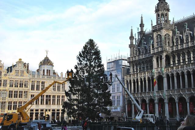 Grand Place in Brüssel mit Weihnachtsbaum