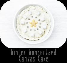 http://www.ablackbirdsepiphany.co.uk/2017/12/winter-wonderland-canvas-cake.html